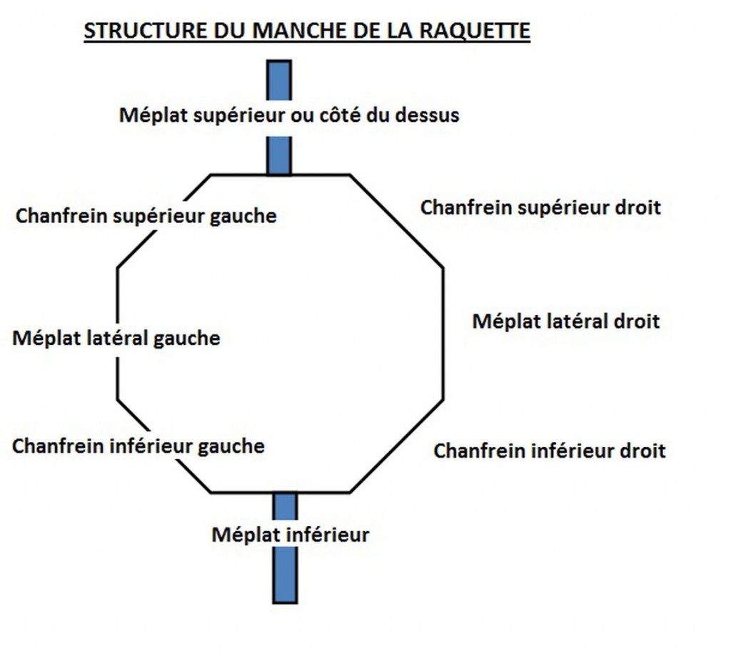 structure de la raquette de tennis